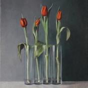 vier-rode-tulpen